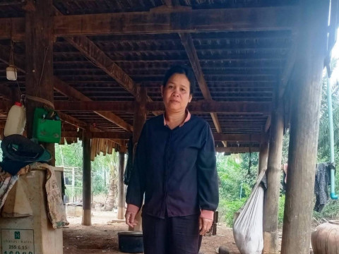 photo of Pheap