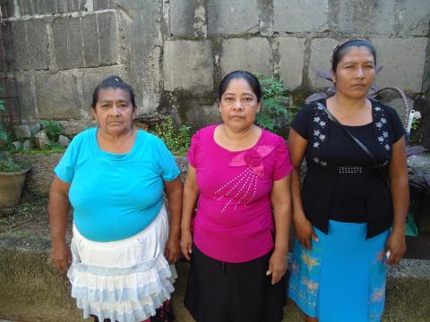 photo of El Mamon Group