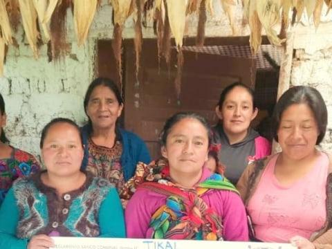 photo of Tikal Group