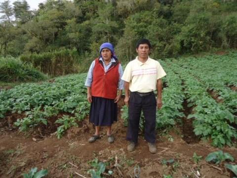 photo of Campos Verdes Group