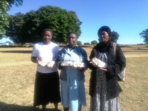 photo of Marirangwe Orange Group