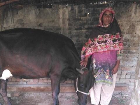 photo of Maqbool