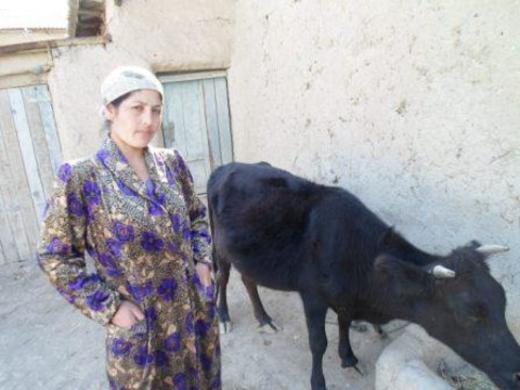 photo of Khursheda