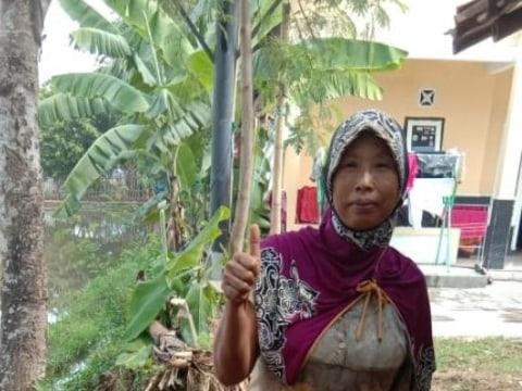photo of Saenah