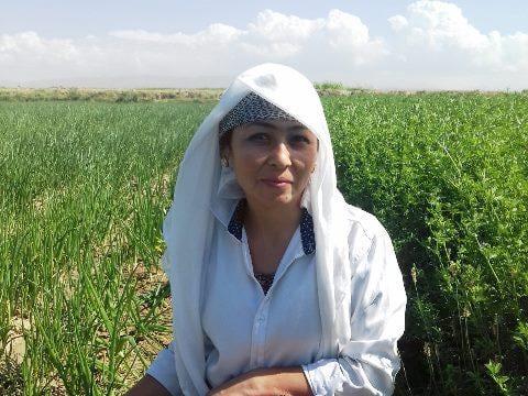 photo of Shirinjon