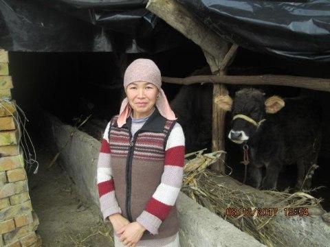 photo of Gulumkan