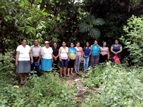photo of Nuevo Samugari Group