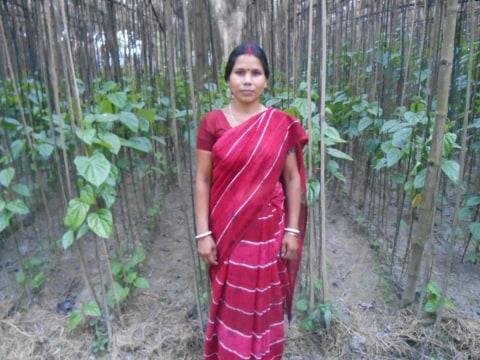 photo of Janata