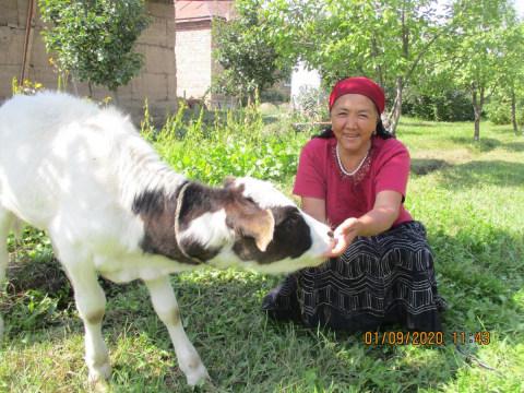 photo of Aitbu