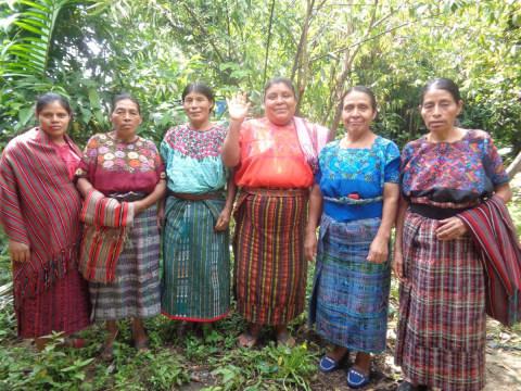 photo of Camarosa 2 Group