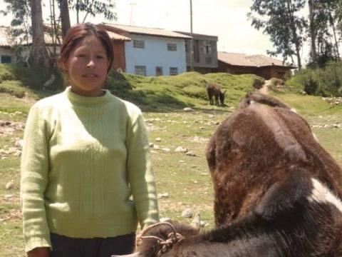 photo of Herenia