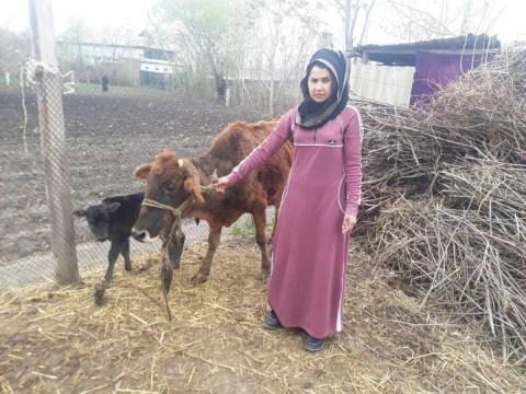 photo of Mohrachab