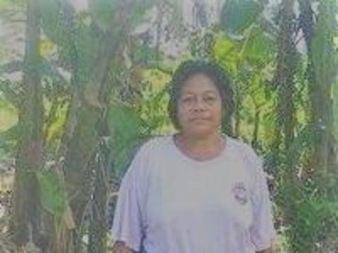 photo of Feiloaiga