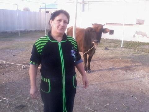 photo of Tahire