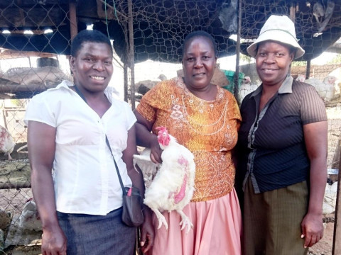 photo of Makwiramiti Group