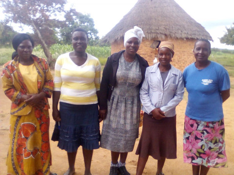 photo of Dimbe Group
