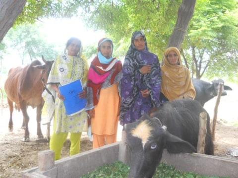 photo of Naseem's Group