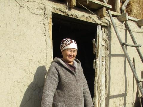 photo of Halcha