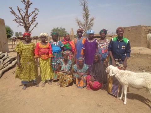 photo of Helemaidema Group