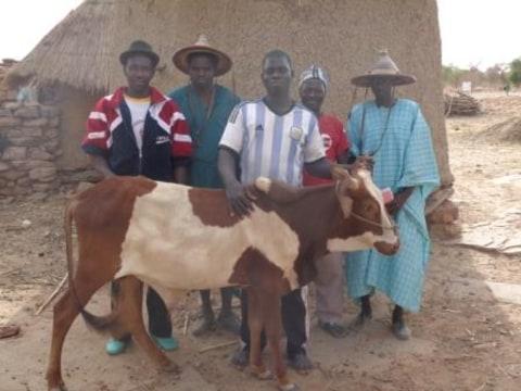 photo of Bodjina -Wana Group