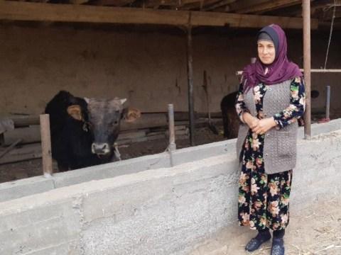 photo of Sadorat