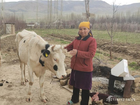 photo of Anarkhan