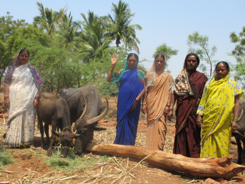 photo of Mallikarjuna- Herkal Group