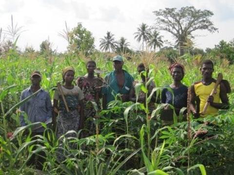 photo of Dzidodo/bolou-Kpeme Group