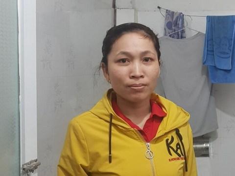 photo of Hoi