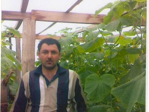 photo of Gazanfar