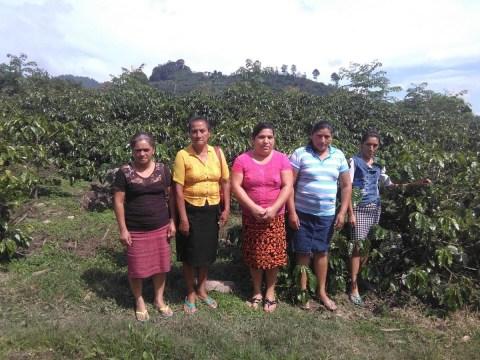 photo of Las Aldeas Group