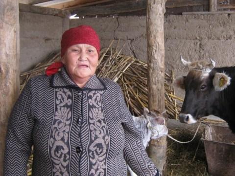 photo of Uulbu