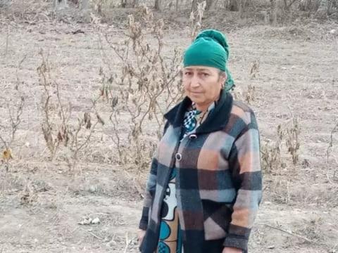 photo of Pardahol