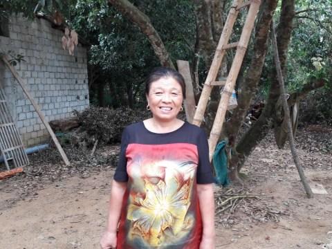 photo of Xoan