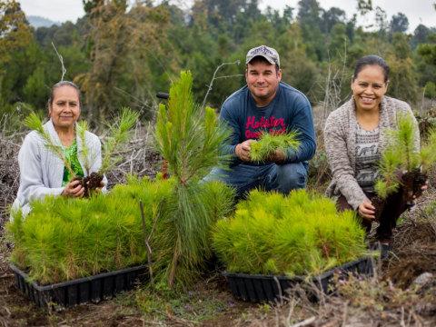 photo of Mesa De Las Flores Group
