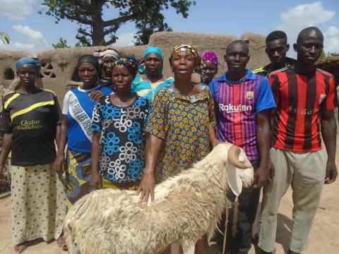 photo of Jigi Seme N° 1 Group