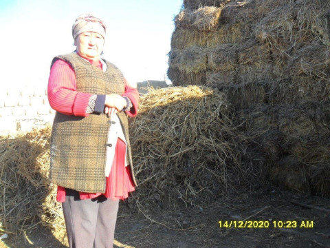 photo of Kuljamal