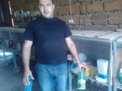 photo of Bagrat