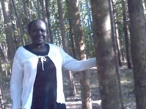 photo of Abisiba