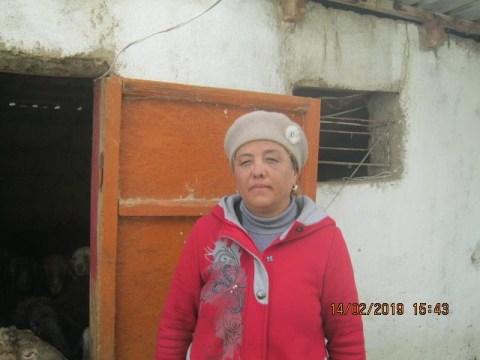 photo of Saltanat
