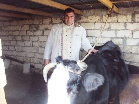 photo of Tofiq