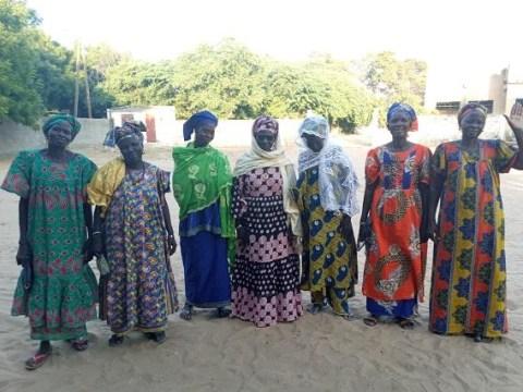 photo of 04_Ngohe Group