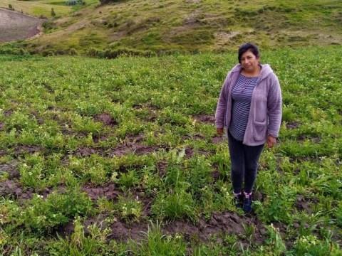 photo of Rosaura Amparo