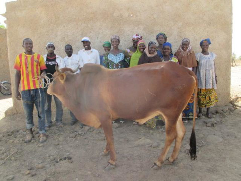 photo of Sabougnouma Group
