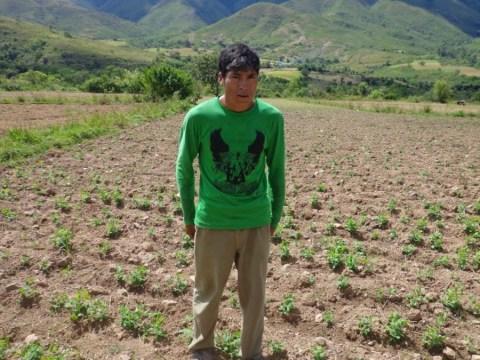 photo of Isaias