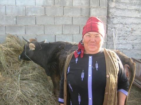 photo of Burulcha