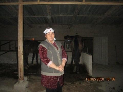 photo of Gulyas