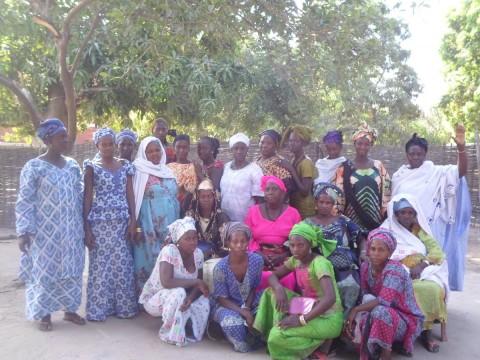 photo of Kodel's Group