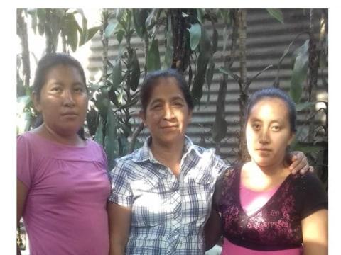 photo of Grupo Caan Group