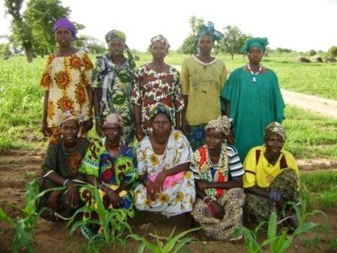 photo of Djantoyerela 3 Group